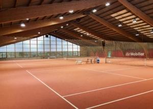 Bild des Tennisplatzes im Sportcenter Bustelbach